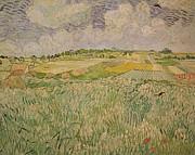 The Plain At Auvers Print by Vincent Van Gogh