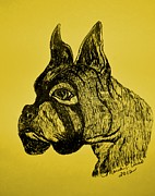 Boxer Drawings - The Playful Guardian by Maria Urso