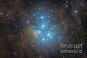 Blue Subaru Prints - The Pleiades, An Open Star Cluster Print by Roberto Colombari