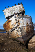 Abandoned Boats Prints - The Point Reyes Print by Garry Gay