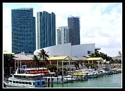 Ports Originals - The Port of Miami at Bayside by Dora Sofia Caputo