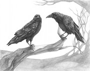 Raven Drawings Prints - The Pot and the Kettle Print by CarrieAnn Reda