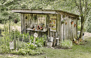 Farming Barns Posters - The Potting Shed Poster by Heather Applegate