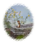 Chipmunk Art Framed Prints - The Praying Chipmunk 1a Framed Print by Maria Urso