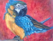Rhodes Originals - The Pretentious Parrot by Bonnie Peacher
