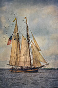 Tall Ships Prints - The Pride Of Baltimore II Print by Dale Kincaid