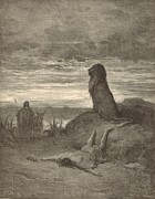 Christian Artwork Drawings - The Prophet Slain by a Lion by Antique Engravings