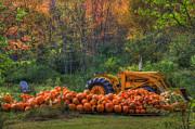 New Hampshire - The Pumpkin Patch by Joann Vitali