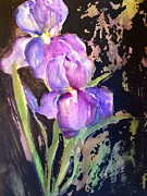 Sherry Harradence - The Purple Iris