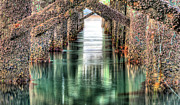 Wrightsville Framed Prints - The Quiet of Green Framed Print by JC Findley