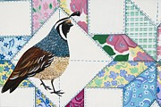California Quail Paintings - The Quilt Visitor by Jennifer Lake