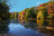 Pond In Park Prints - The Radiance of Autumn Print by Lanis Rossi