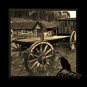Barkerville Photos - The Raven Flies Straight by Barbara St Jean
