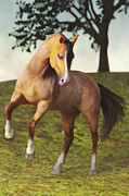 Liam Liberty - The Rearing Horse