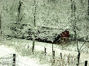 Red Barn In Winter Photos - The Red Barn by Mimi Saint DAgneaux