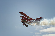 Gary Hall - The Red Baron