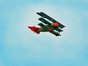 Air Plane Photo Prints - The Red Baron Print by Thomas Young