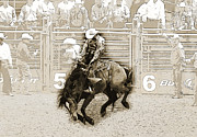 Rodeos Posters - The Ride Poster by Lisa Moore