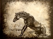 Watercolor. Equine. Bridle Prints - The Rise of Luzia Minera Print by Amanda  Stewart