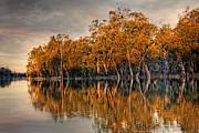 Mark Richards - The River Murray Renmark...