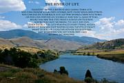 Randall Branham - THE RIVER OF LIFE