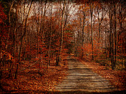 Country Lanes Digital Art Prints - The Road Goes On Print by Pamela Phelps