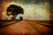 Gravel Road Digital Art Framed Prints - The Road Home Framed Print by Julie Hamilton