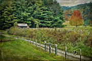Autumn Prints Prints - The Road Leads Home Print by Kathy Jennings