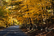 Photos Of Autumn Prints - The road less traveled Print by Jeff Folger