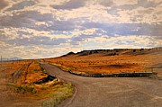 Marty Koch Metal Prints - The Road Less Traveled Metal Print by Marty Koch