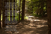 Summer Season Landscapes Prints - The Road Less Traveled - Robert Frost Path in the Woods Print by Georgia Fowler