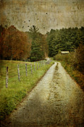 Autumn Photographs Prints - The Road To A Friends House Print by Kathy Jennings