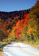 Danielle Smith Metal Prints - The road to Fall Metal Print by Danielle Smith