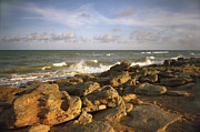 Florida Gifts Framed Prints - The Rocks IV. Flagler County. Framed Print by Chris  Kusik