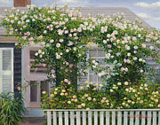 Cape Cod Paintings - The Rose Covered Cottage 2 by OMalley Keyes