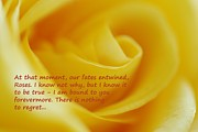Lisa  DiFruscio - The Rose Quote