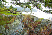 Saltspring Photo Originals - The rucklerock by Graham Foulkes