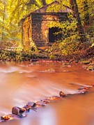 Fallen Leaf Framed Prints - The ruins of an Old Mill Framed Print by Maciej Markiewicz