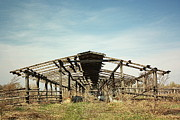 Old Farm Shed Originals - The Ruins Of The Barn by Oleksii Vovk