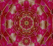 Hippie Mixed Media Posters - The Sacred Orchid Hippie Mandala Poster by Pepita Selles
