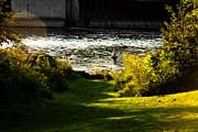 Joeseph Photos - The saint joseph river niles michigan by Amy Lingle
