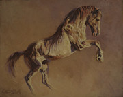 Salt River Wild Horses Paintings - The Salty One by Mia DeLode