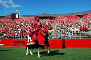 Cheers Prints - The Scarlet Knight Print by Allen Beatty