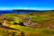Golfers Framed Prints - The Scenic Chambers Bay Golf Course III - Location Of The 2015 U.s. Open Tournament Framed Print by David Patterson