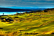 Golfers Framed Prints - The Scenic Chambers Bay Golf Course - Location of the 2015 U.S. Open Tournament Framed Print by David Patterson