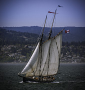 Dutch Ducharme - The Schooner Pacific...