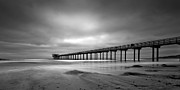 Shores Photos - The Scripps Pier - Black and White by Peter Tellone
