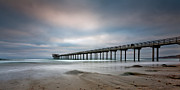Shores Photos - The Scripps Pier by Peter Tellone