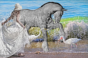 Ibis Art - The Sea Horse by Betsy A Cutler East Coast Barrier Islands