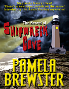 Book Jacket Design Photos - The Secret of Shipwreck Cove by Mike Nellums
